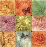Inspirational Squares I