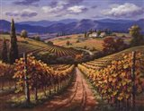 Vineyard Hill II
