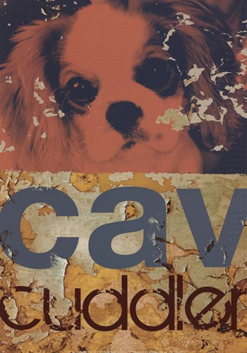 Cavalier Cuddler Poster by M.J. Lew for $21.25 CAD