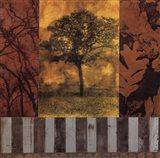 Nature Series I