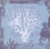 Seaside Coral III