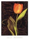Tulip Manuscript I