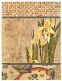 Canteiro De Flores II
