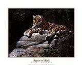 Jaguar on Rock