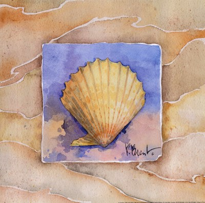 Scallop Poster by Paul Brent for $13.75 CAD
