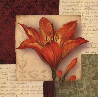 Bella Donna IV Poster by Pamela Gladding for $13.75 CAD
