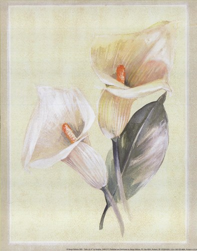 Calla Lily IV Poster by Paul Hargittai for $10.00 CAD