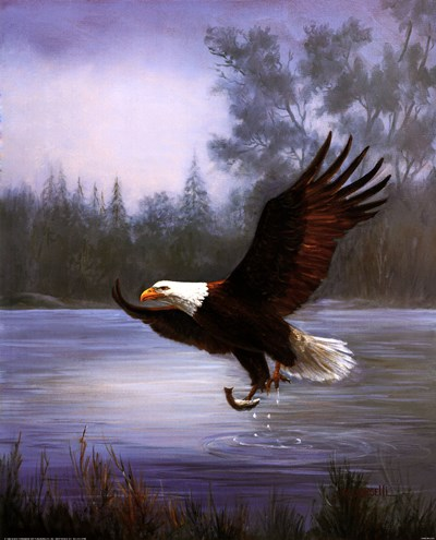 Eagle Fishing Poster by Marianne Caroselli for $20.00 CAD