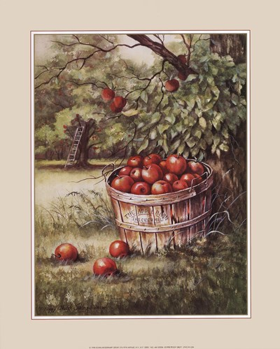 Apple Orchard Poster by Peggy Thatch Sibley for $20.00 CAD