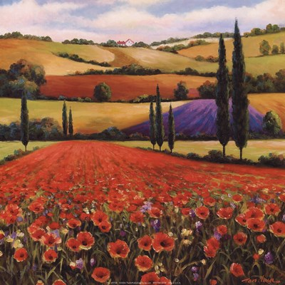 Fields of Poppies II Poster by T.C. Chiu for $11.25 CAD