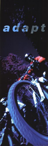 Adapt-Mountain Biker Poster by Unknown for $16.25 CAD