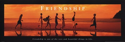 Friendship Rare And Beautiful Poster by Unknown for $18.75 CAD