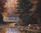 Foot Bridge in the Woods