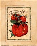 Vintage Tomatoes