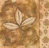 Leaf Oasis IV