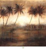 Five Palms