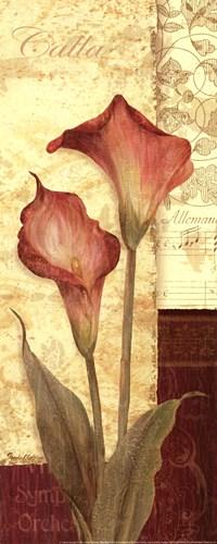 Quattro Sonata IV Poster by Pamela Gladding for $15.00 CAD