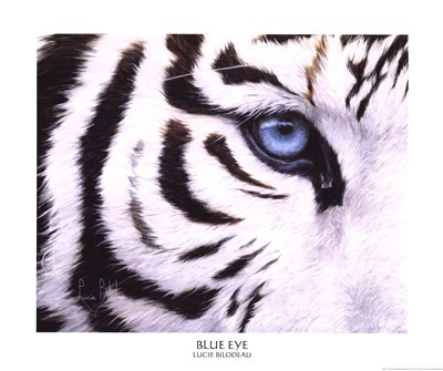 Blue Eye Poster by Lucie Bilodeau for $26.25 CAD