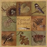 Birds of a Feather - square