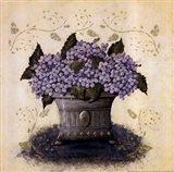 Color Purple I