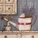 Herbs & Watering Can
