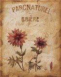 Parcnaturel I - Mini