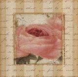 Rose & Romance I
