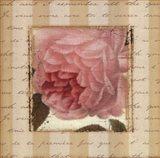 Rose & Romance II