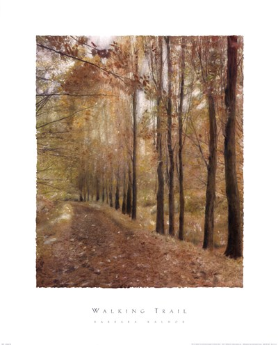 Walking Trail Poster by Barbara Kalhor for $40.00 CAD