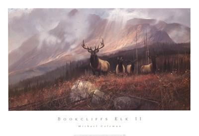 Bookcliffs Elk Ii Poster by Michael Coleman for $40.00 CAD