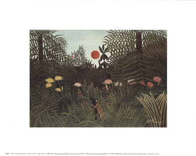 Virgin Forest Poster by Percival L. Rosseau for $8.75 CAD