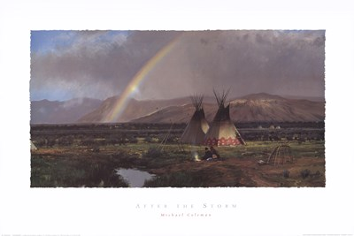 After the Storm Poster by Michael Coleman for $40.00 CAD