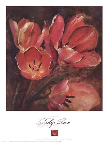 Tulip Two Poster by Dysart for $45.00 CAD