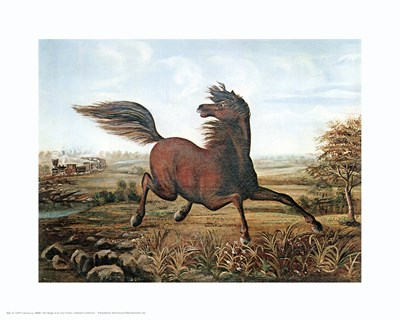 Neigh of an Iron Horse Poster by Salvador Dali for $20.00 CAD