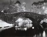 Snowfall In Central Park