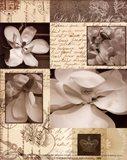 Flora Carte Postale II