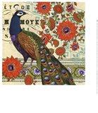 Vintage Peacock II