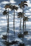 Mirrored Palms
