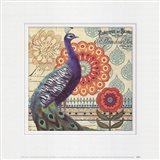 Vintage Peacock I