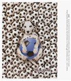 Caff-Fur-Ino Soccer Pup
