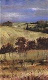 Tuscan Daylight II
