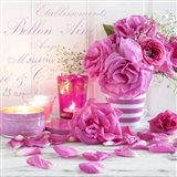 Zen Roses I