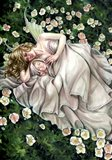 Sleepy Spring