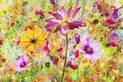 Flowers in the Meadow Poster by Ata Alishahi for $43.75 CAD
