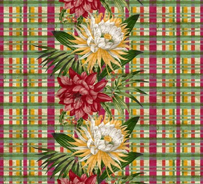 Cereus Plaid Multi Poster by Bill Jackson for $52.50 CAD