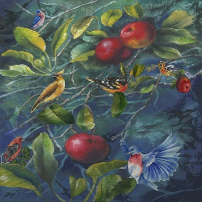 Orchard Life Image Poster by Bill Jackson for $41.25 CAD