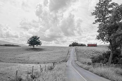 Hilly Road BW Poster by Bob Rouse for $43.75 CAD