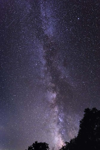 Milky Way Poster by Brenda Petrella Photography LLC for $53.75 CAD