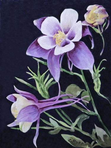 A Touch of Purple Poster by Carol J Rupp for $32.50 CAD