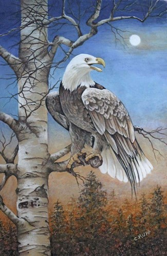 Moonlight Eagle Poster by Carol J Rupp for $45.00 CAD